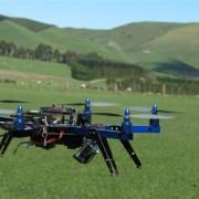 drones-animales