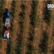 drones-videos-corporativos-bodegas
