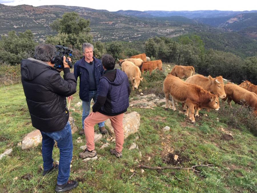 television-valenciana-drones